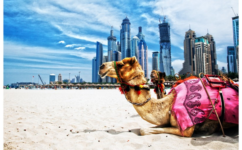 Dubai and Bangkok – Oh My!