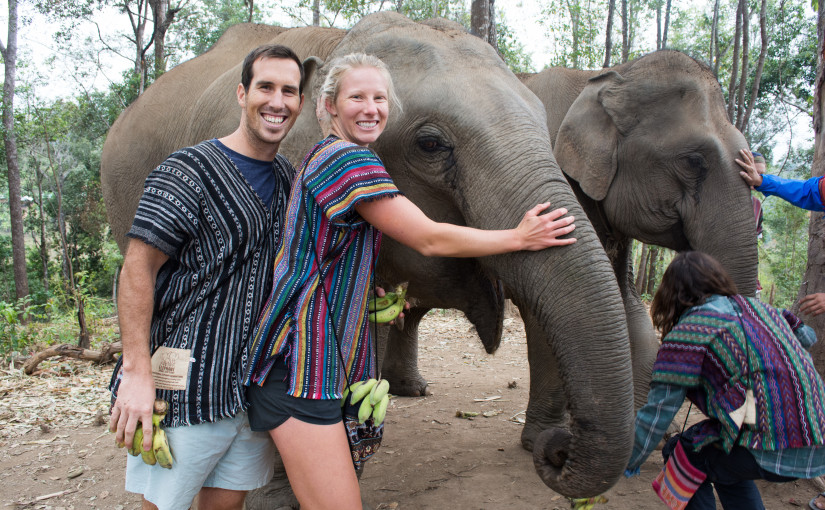 Elephant Sanctuary in Chiang Mai!