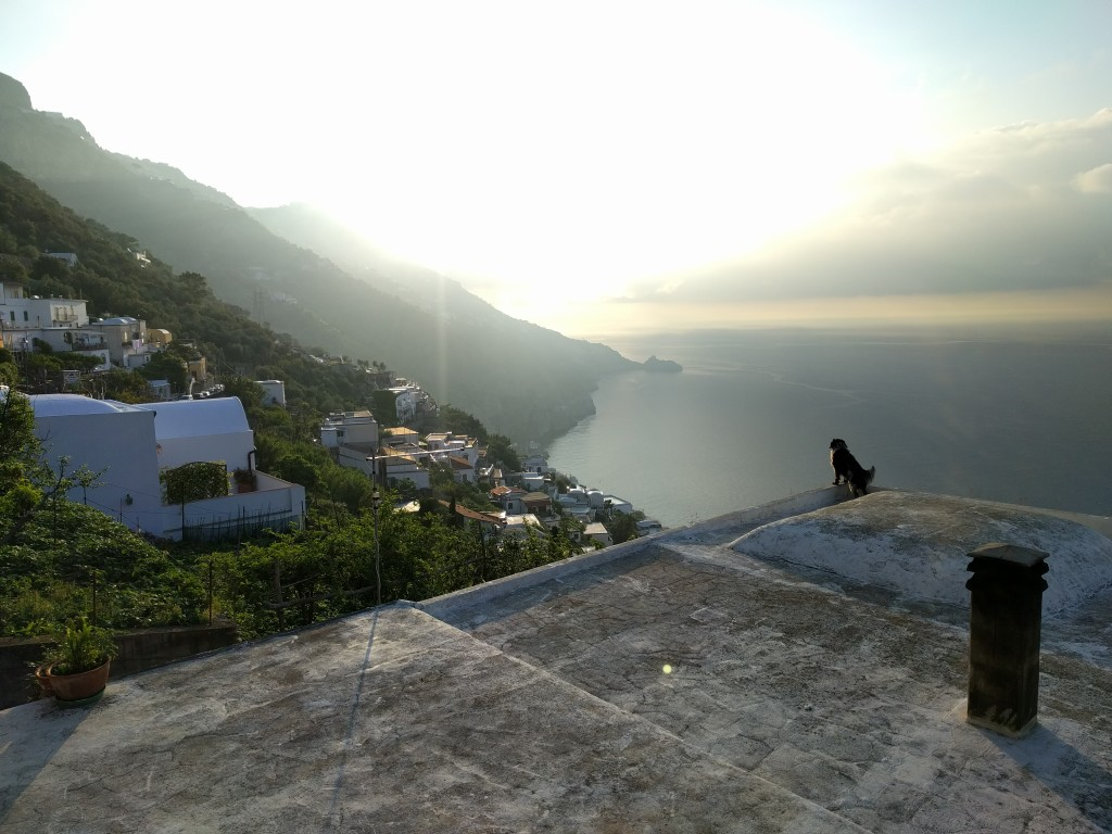 I ran to the top of the town one morning to catch the sunrise with my dog friend I made. Very steep, lots of stairs. Worth it.